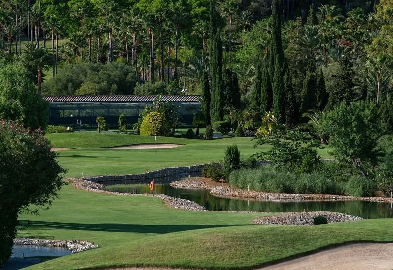 Learn more about Golf Son Vida